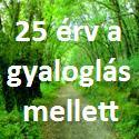 25 érv a gyaloglás mellett