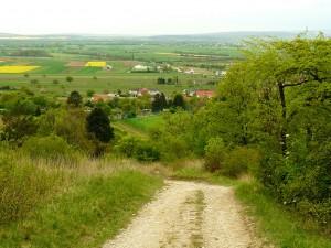 Lajta-völgy látképe