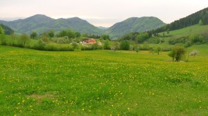 Ober Grafendorf előtt