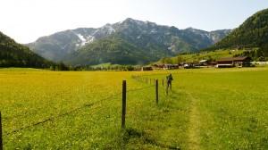 Tiroli út