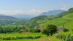 A Rhône völgy 1