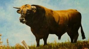 Aubrac bika - festményen